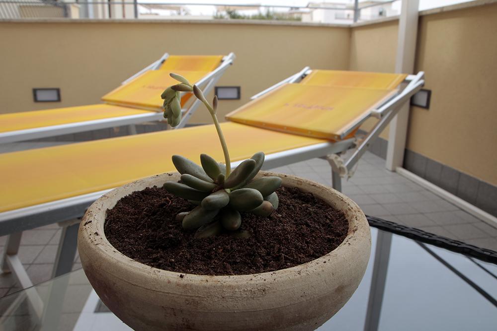 camera con terrazza 5 - Hotel Solarium San Vito Lo Capo